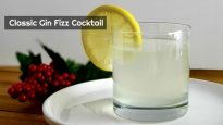 Classic Gin Fizz